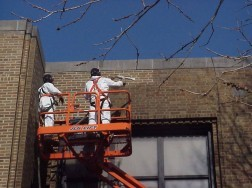 Dry Ice Blasting a Brick Facade
